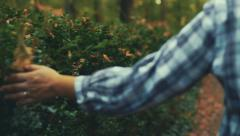 Hand touching leafs representing ecology Stock Footage