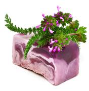 Natural handmade soap with herbs Stock Photos