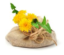 beautiful wildflowers, dandelions, milfoil in the sacking - stock photo
