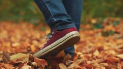 Footsteps in dead leafs Stock Footage