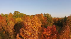 Aerial Fall Color Woodland Tilt Down Canada - stock footage