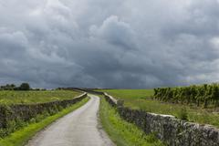 Thunderstorm above vinyard saint-emilion Stock Photos