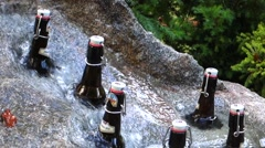 Beer bottles in a garden fountain Stock Footage