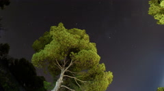 Milky way  fish eye  lens mediterranean pine tree time lapse 4K Stock Footage