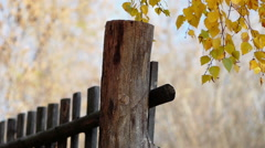 Wooden Fence 1 Stock Footage