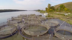 Sturgeon farm aerial Stock Footage