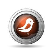 Bird icon Piirros