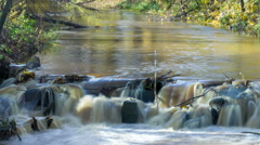 Cascade on river, long exposure timelapse, yellow leaf reflection at autumn - stock footage