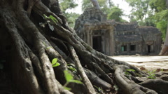Pull-Focus Tree Roots Main Entrance Ta Prohm With Tourists - stock footage