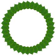 green circle from leaves isolated on white - stock illustration