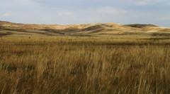 Autumn steppe Stock Footage