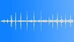 Black wildebeest calling Sound Effect