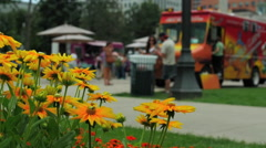Yellow Daisies with out of focus food truck in the background in the park - stock footage