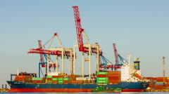 Container cargo freight ship in shipyard with working cranes loading containers Stock Footage