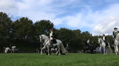 Classic cavalry big quadrille placement for demonstration Stock Footage