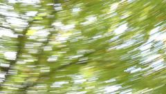 dizziness in the forest - stock footage
