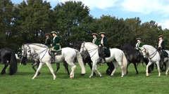 Classic cavalry big quadrille demonstration parade riding circle Stock Footage