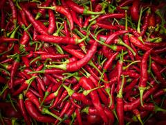 chilies - stock photo