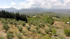 Olive trees and Vineyards in Koutsi Nemea's Greece Stock Footage