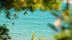 Sea, beache and summer Stock Footage