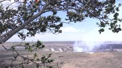 Kilauea, framed by tree Stock Footage