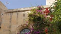 Mdina, Malta Stock Footage