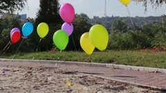 Multicolored balloons Stock Footage