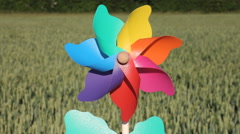 Colourful flower pinwheel with crops in background. Stock Footage