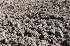 Arable field with black soil Stock Photos
