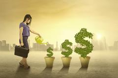 woman watering the money trees outdoors - stock illustration