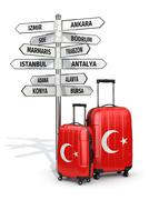 travel concept. suitcases and signpost what to visit in turkey. - stock illustration