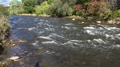 Shallow River and Rapids (4K) - stock footage