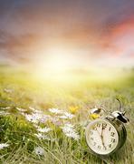 Alarm clock in sunlit spring field Stock Photos