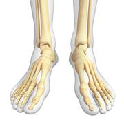 Human foot artwork Stock Illustration