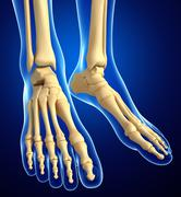 human foot artwork - stock illustration