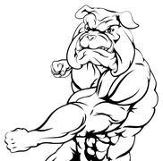 tough bulldog character punching - stock illustration