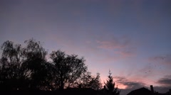 4k Swarm crows flying to city after sunset and bat awakes Stock Footage