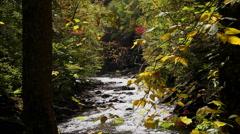 Sunny autumn mountain river Stock Footage