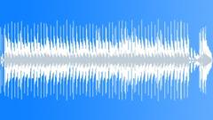 Texas Roadrunner Blues [ 30 seconds ] Stock Music