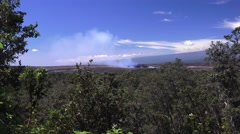 Kilauea, through the forest Stock Footage
