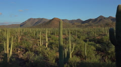 4K Beautiful Arizona Desert Scenic Landscape Pan Stock Footage