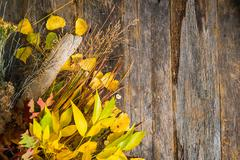 autumn bouquet background with copy space. - stock photo