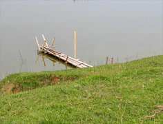 Bamboo bridge on the pond Stock Footage