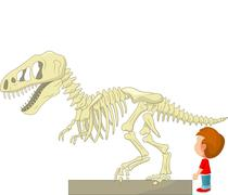 Boy cartoon with dinosaur skeleton at the museum Stock Illustration
