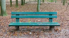 Stock Photo of wooden park bench in a forrest