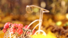 Wedding rings on a decorative small bike in the yellow leaves in autumn park. Stock Footage
