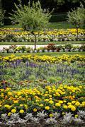 Flowerbeds in the castle garden Stock Photos