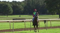 4k Horse Racing jockey on stubborn horse riding to start boxes Stock Footage