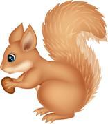 Squirrel cartoon holding nut Stock Illustration