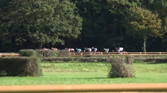 4k Horse Racing final race tracking shot closeup passing by Stock Footage